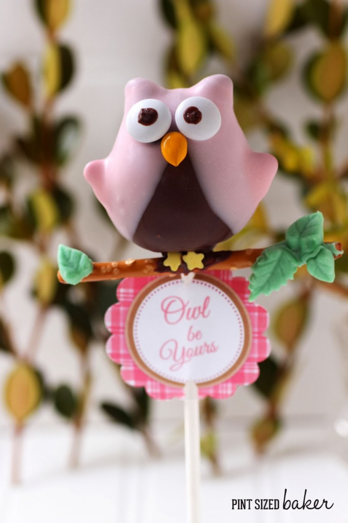 1 ps Owl Cake Pops (26)_edited-2