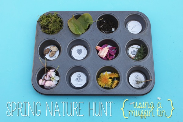 spring-nature-hunt-using-a-muffin-tin-mama-papa_-bubba_