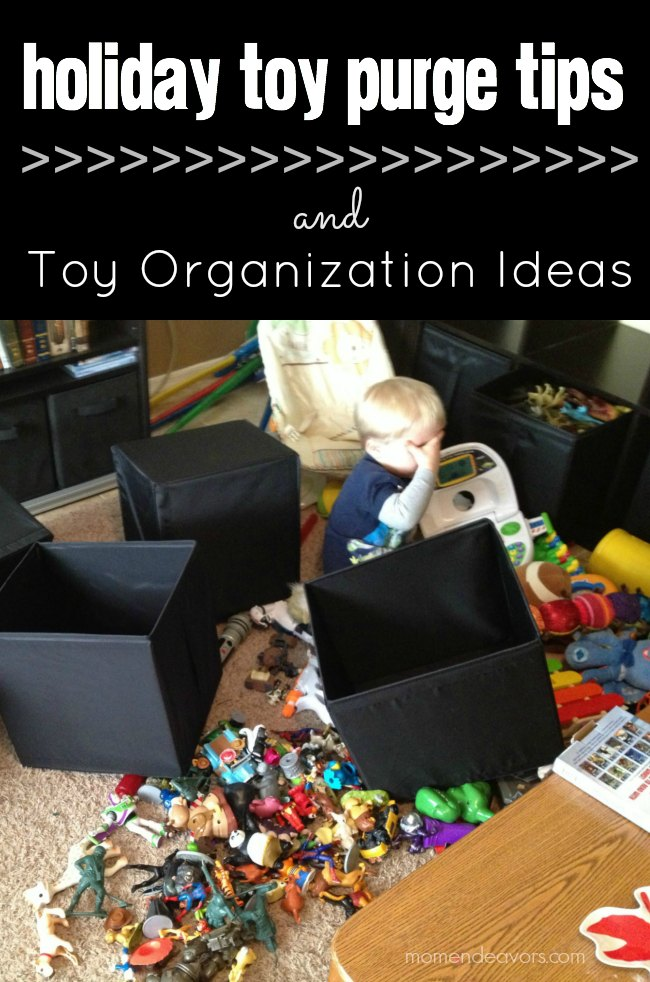 toy-purge-organization-ideas